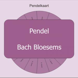 pendel bachbloesem